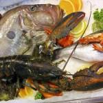 Nabídka čerstvých ryb